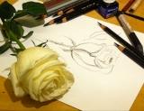 Рисунок. Мастер-класс по рисунку
