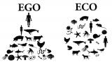 Вечер «No ego, yes eco!». Основы экологичного образа жизни