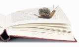 Практикум «Медленное чтение» + презентация Курса «Философия для жизни»